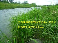 Sp1080896